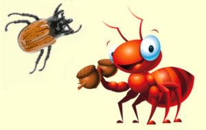 Fábula La Hormiga Y El Escarabajo Leer Ahora 2019